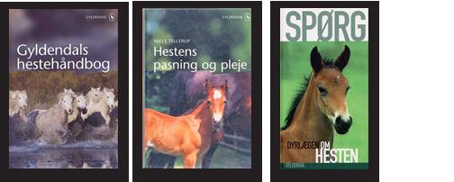 Forfatter Niels Tellerup